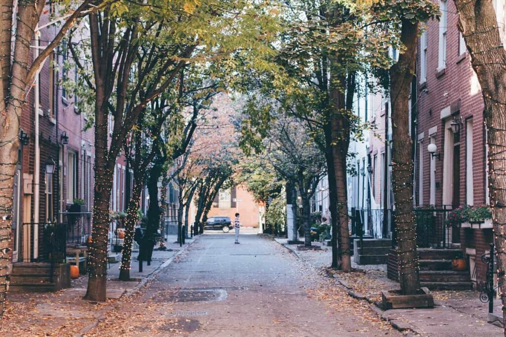 An empty street with tree lines on both sides